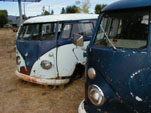 Several Volkswagen T1 Buses in VW Boneyard, Awaiting Restoration