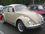 VW Bug in original paint color L620 - Savannah Beige