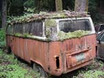 Volkswagen Junkyard With Late Model VW Bay Window Bus Sprouting Roof of Weeds