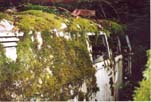 Secret Volkswagen Junkyard Has a VW Panel Van Camper Conversion Covered With Moss