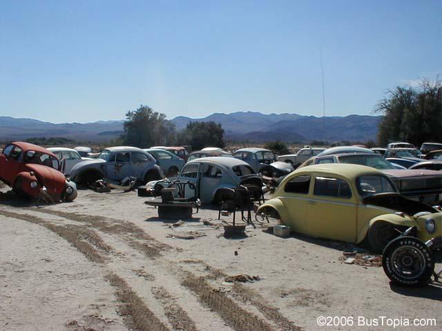 Volkswagen junkyard with loads of vintage bugs