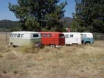 Volkswagen Junk Yard With Collection of Very Original VW Split Window Buses