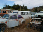 VW Wrecking yard with original bay window buses and vintage beetles