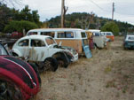 Forgotten VW Wrecking yard