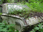 Volkswagen Wreckingyard Includes This Plymouth Valient Sedan Growing Ferns