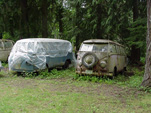 Volkswagen Wrecking Yard with Group of Early Volkswagen Splittie Buses